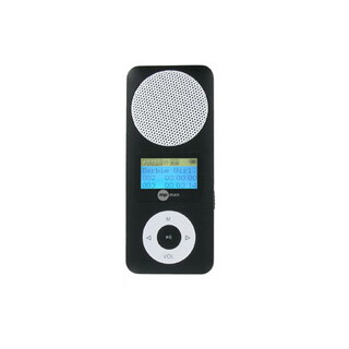 MP Man Lecteur MP3 FIESTA 2 2GB Noir