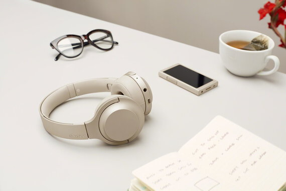 Sony NW-A45 16GB Lecteur MP3 - Or