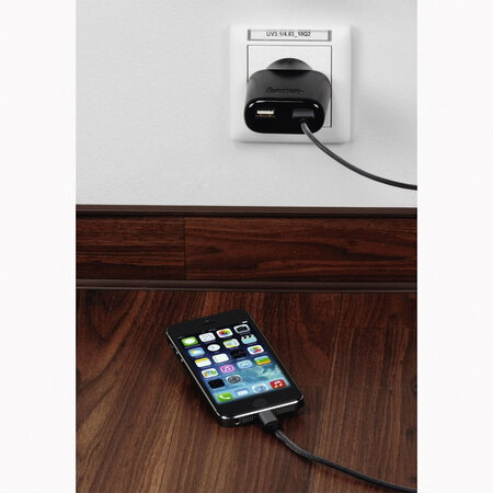 Hama 220V 2-PORT USB CHARGER 4.8A