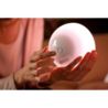 PHILIPS HUE Go draagbare lamp - White en color ambiance 71460/60/PH