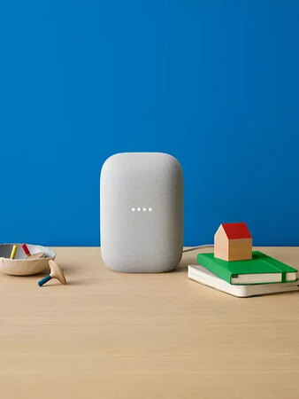 Google Nest Audio - Chalk